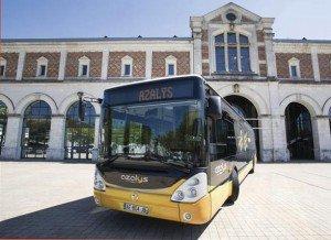 Bus-Azalys
