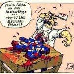 Charcutage-electoral
